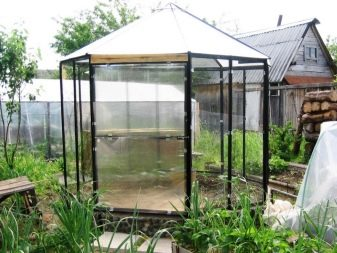 Polycarbonate greenhouses (150 photos): advantages and
