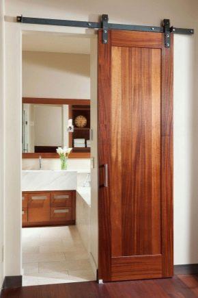 Schiebetüren zum Badezimmer (36 Fotos): Glasfach Türen zum ...