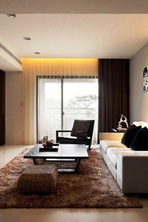 Diseño de la sala: la sutileza de la sala de diseño de 20 metros cuadrados. m