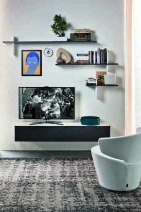 Muebles para TV en el salón: características de diseño.