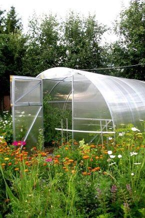 Rendimiento de invernadero: características, beneficios y dimensiones.