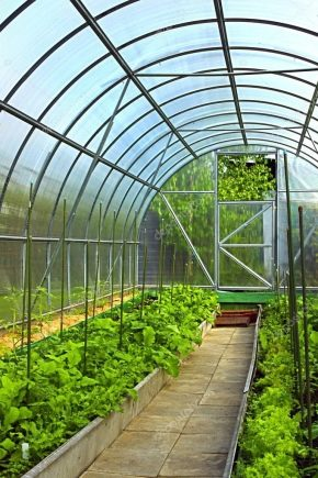 How to make a greenhouse?