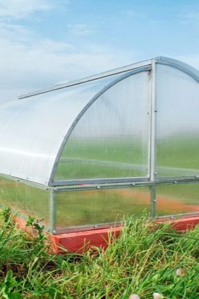 Greenhouse Breadbox: what it is, advantages and disadvantages