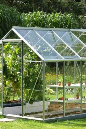 Rumah rumah hijau: pilihan dan ciri reka bentuk