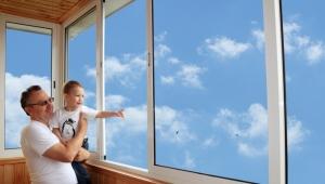 Loggia windows