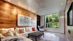 Diseño del salón: las sutilezas de crear un interior armonioso.