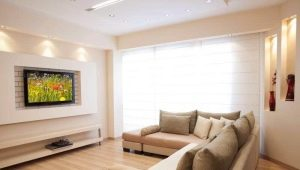 Diseño interior de la sala de estar: decorar un nicho de pladur.