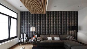 Sienas dizains dzīvojamā istabā: modernas dizaina idejas