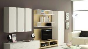 Muebles de armario para la sala de estar: hermosas opciones en el interior.