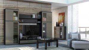 Muebles para la sala de estar: las reglas para elegir productos en diferentes estilos.