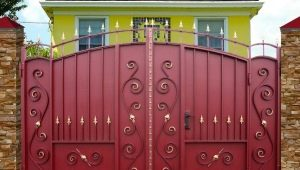 Metal gates: types and features of choice