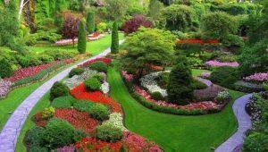Mixborders: pilihan reka bentuk landskap yang indah