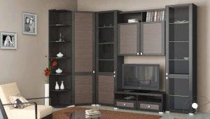 Muebles de esquina para el salón: características de elección.