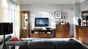 Elegir una cómoda en la sala de estar: una combinación de practicidad y belleza