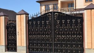 Gate with a wicket: designs