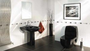 Μαύρες τουαλέτες: τρέχουσες τάσεις σχεδίασης