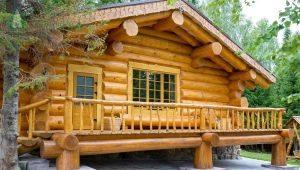 Cedar Bath: the choice of wood