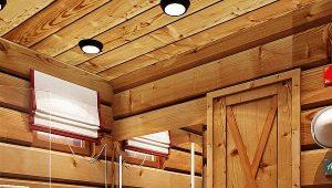 Chalet bath: beautiful design solutions