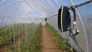 Heaters for greenhouses: types and features of the application