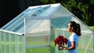 Polycarbonate greenhouses: advantages and disadvantages
