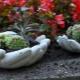 Membuat pot bunga luar untuk bunga lakukan sendiri