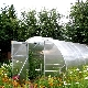 Greenhouse Yield: features, benefits and dimensions
