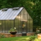 Greenhouses: types, device and equipment