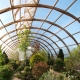 Film for greenhouses: features of choice