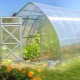 Greenhouses Will: types and characteristics