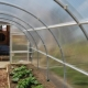 How to make a greenhouse from polypropylene pipes?