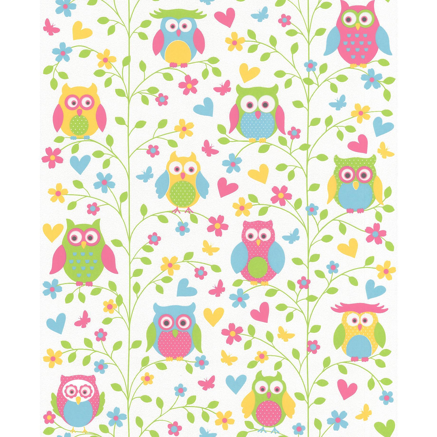 1040+ Wallpaper Burung Hantu Hidup Gratis