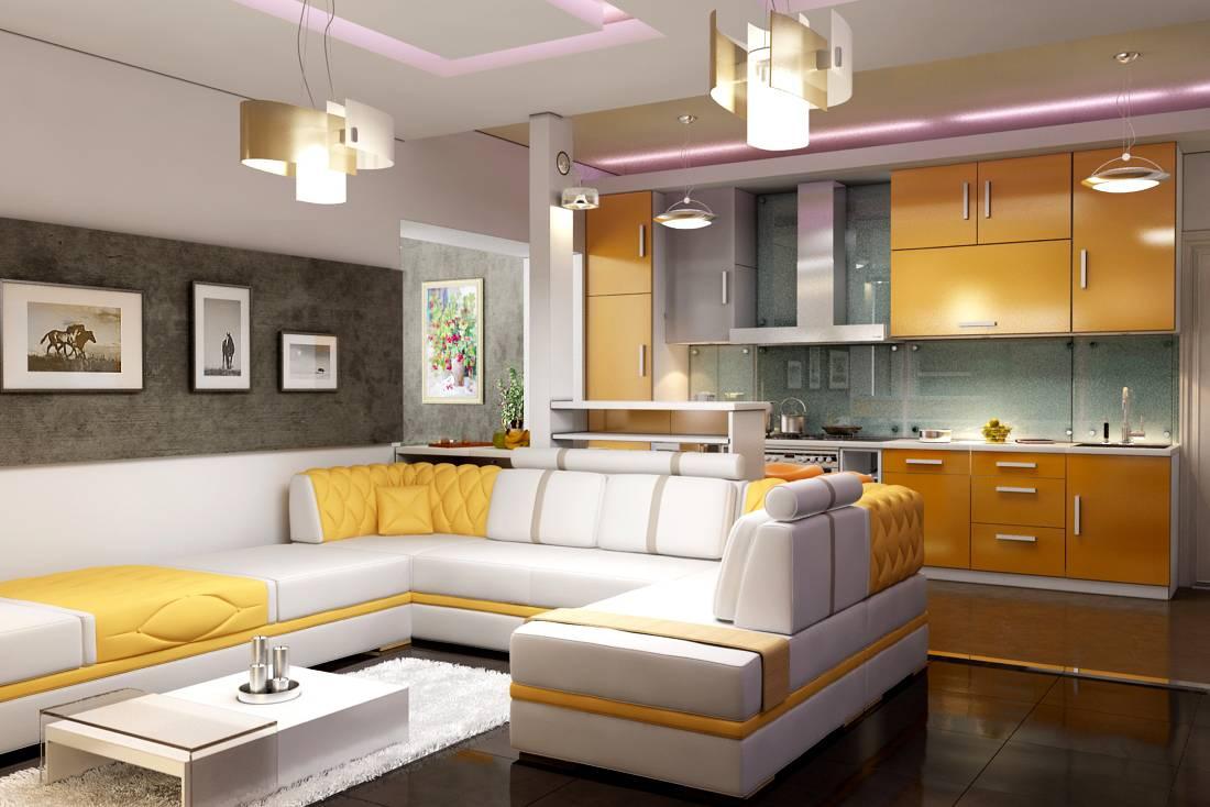 Disposizione del soggiorno-cucina (58 foto): combinazione ...
