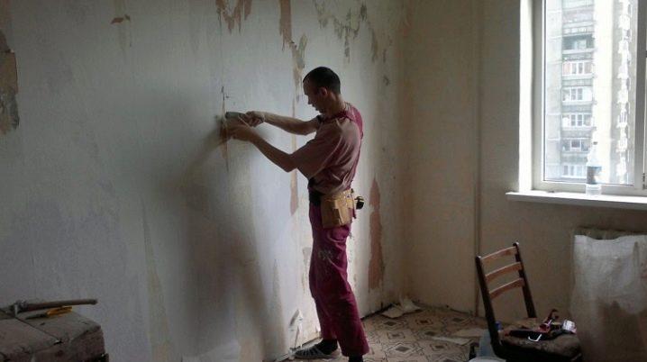 Pareti Per La Pittura 60 Foto Ordine Di Lavoro Come Preparare Il Muro Per L Allineamento Preparare La Riparazione Con Le Proprie Mani